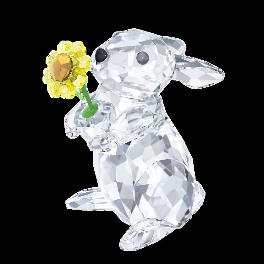 Rabbit with Sunflower
