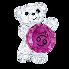 Kris Bear - Cancer