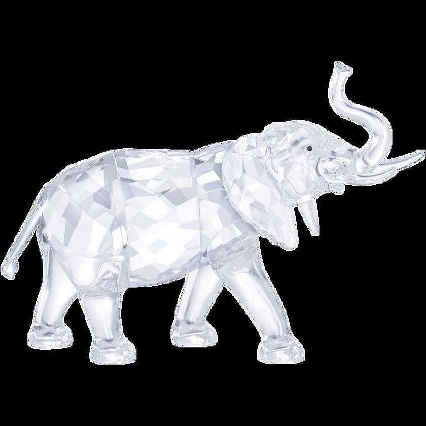 Elephant, Small