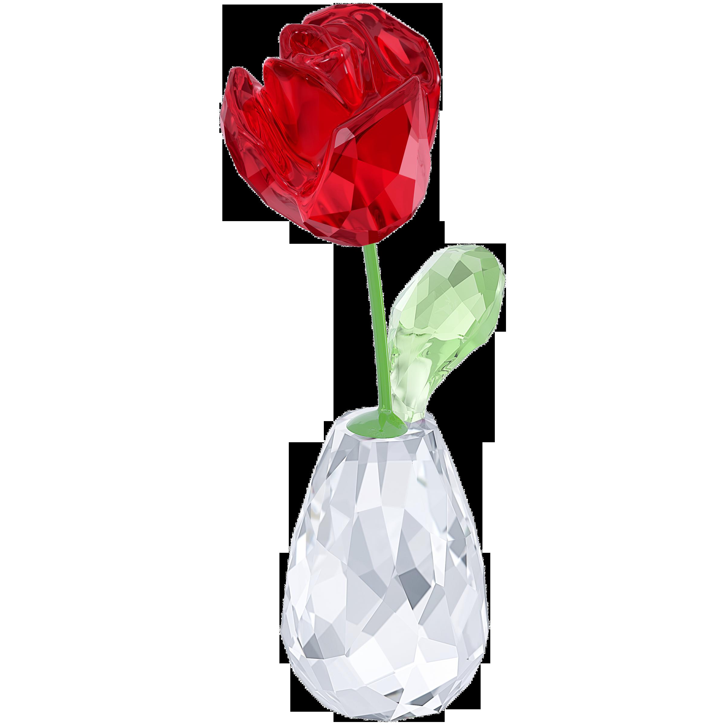 Flower Dreams   Red Rose